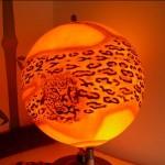 wereldbol-cheetah